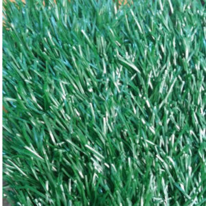 Buy Spring Grass Carpets Online at DecorhubNG