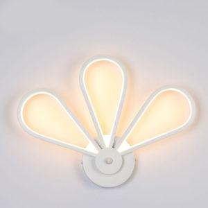 30W LED Wall Lamp